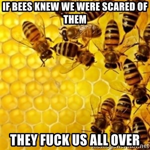Honeybees - IF BEES KNEW WE WERE SCARED OF THEM THEY FUCK US ALL OVER