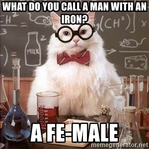 Chemist cat - what do you call a man with an iron? a Fe-male