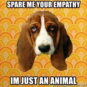 SAD DOG - Spare me your empathy Im just an animal