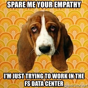 SAD DOG - spare me your empathy I'm just trying to work in the fs data center