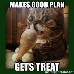 lil bub - makes good plan gets treat