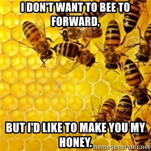 Honeybees - I DON'T WANT TO BEE TO FORWARD, BUT I'D LIKE TO MAKE YOU MY HONEY.