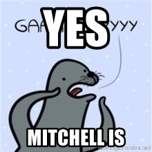GAAAY - YES  MITCHELL IS