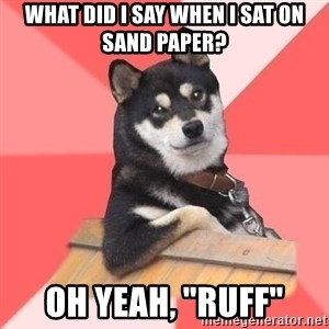 """Cool Dog - what did i say when i sat on sand paper? oh yeah, """"ruff"""""""