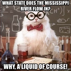 Chemistry Cat - what state does the mississippi river flow in? why, a liquid of course!