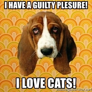 SAD DOG - I HAVE A GUILTY PLESURE! I LOVE CATS!