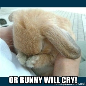 Bunny cry - or bunny will cry!