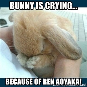 Bunny cry - BUNNY IS crying... BECAUSE OF REN AOYAKA!