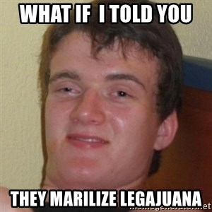 Stoner Guy - what if  i told you they marilize legajuana