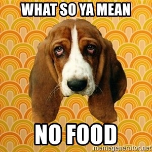SAD DOG - WHAT SO YA MEAN NO FOOD