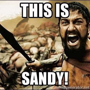 This Is Sparta Meme - THIS IS SANDY!