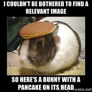 Bunny with Pancake on Head - I couldn't Be Bothered To find a relevant image So here's a bunny with a pancake on its head