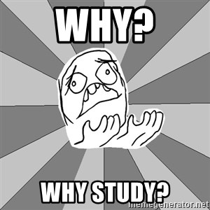 Whyyy??? - Why? why study?