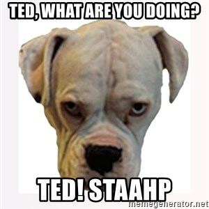 stahp guise - Ted, What are you doing? Ted! STAAHP