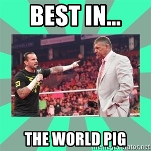 CM Punk Apologize! - BEST IN... THE WORLD PIG
