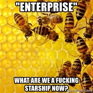"""Honeybees - """"Enterprise"""" what are we a fucking starship now?"""