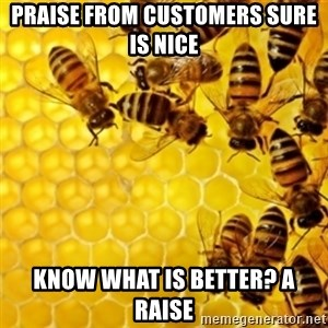 Honeybees - praise from customers sure is nice know what is better? a raise