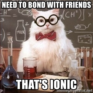 Chemistry Cat - Need to bond with friends That's ionic