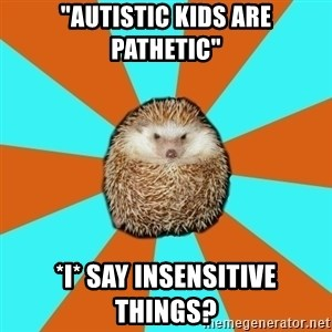 """Autistic Hedgehog - """"Autistic kids are pathetic"""" *I* say insensitive things?"""
