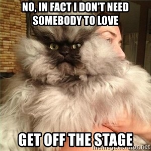 Colonel Meow - No, in fact I don't need somebody to love get off the stage