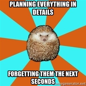 Autistic Hedgehog - Planning everything in details forgetting them the next seconds