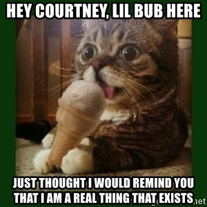 lil bub - hey courtney, lil bub here just thought i would remind you that I am a real thing that exists