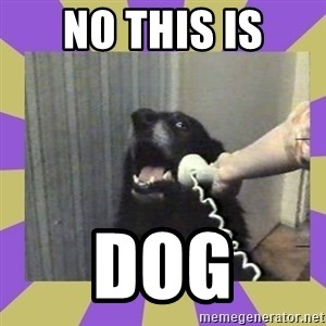 Yes, this is dog! - NO THIS IS DOG