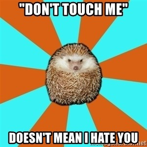 """Autistic Hedgehog - """"Don't touch me"""" doesn't mean I hate you"""