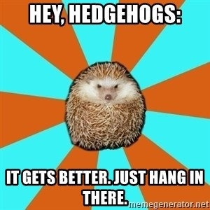 Autistic Hedgehog - Hey, hedgehogs: it gets better. just hang in there.