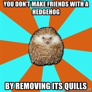 Autistic Hedgehog - you don't make friends with a hedgehog by removing its quills