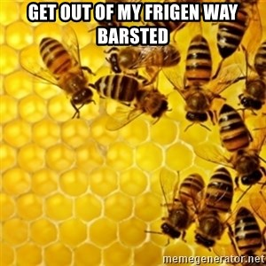 Honeybees - GET OUT OF MY FRIGEN WAY BARSTED