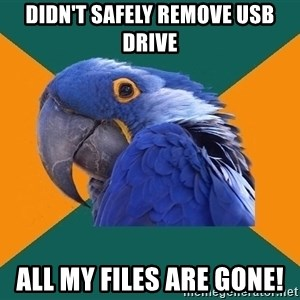 Paranoid Parrot - didn't safely remove usb drive all my files are gone!