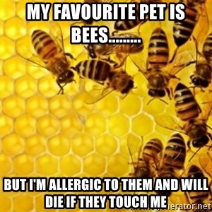 Honeybees - MY FAVOURITE PET IS BEES......... BUT I'M ALLERGIC TO THEM AND WILL DIE IF THEY TOUCH ME