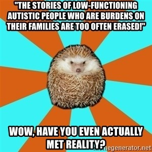 """Autistic Hedgehog - """"The stories of low-functioning autistic people who are burdens on their families are too often erased!"""" Wow, have you even actually met reality?"""