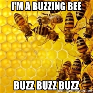 Honeybees - I'M A BUZZING BEE BUZZ BUZZ BUZZ