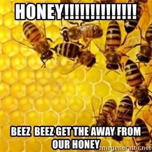 Honeybees - HONEY!!!!!!!!!!!!!! BEEZ  BEEZ GET THE AWAY FROM OUR HONEY