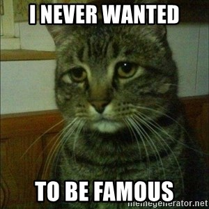 Depressed cat 2 - i never wanted  to be famous