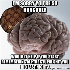 Scumbag Brain - I'm sorry you're so hungover would it help if you start remembering all the stupid shit you did last night?