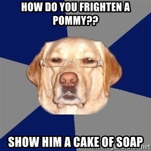 Racist Dawg - how do you frighten a pommy?? show him a cake of soap