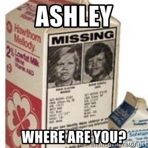 Big Milk Carton - Ashley where are you?