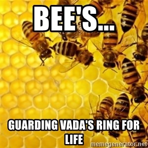 Honeybees - BEE'S... GUARDING VADA'S RING FOR LIFE