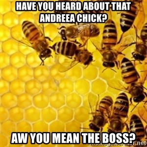 Honeybees - have you heard about that andreea chick? aw you mean the boss?