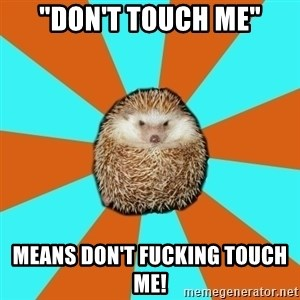 """Autistic Hedgehog - """"Don't touch me"""" Means Don't fucking touch me!"""