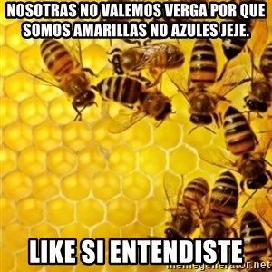 Honeybees - nosotras no valemos verga por que somos amarillas no azules jeje. like si entendiste