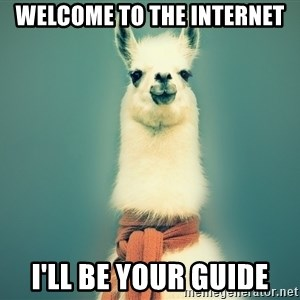 Pancakes llama - WELCOME TO THE INTERNET I'LL BE YOUR GUIDE
