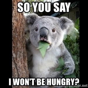 Koala can't believe it - so you say I WON'T BE HUNGRY?
