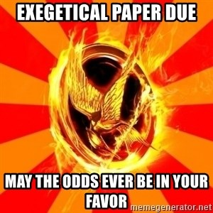 Typical fan of the hunger games - Exegetical paper due  may the odds ever be in your favor