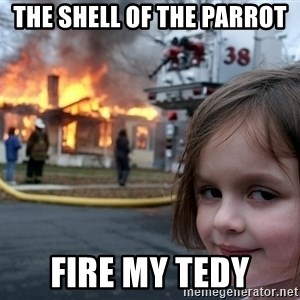 Disaster Girl - the shell of the parrot fire my tedy
