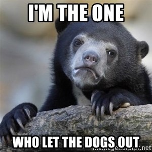 Confessions Bear - I'm the one Who let the dogs out