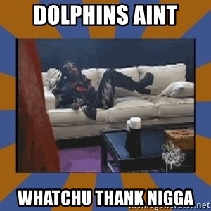 rick james fuck yo couch - dolphins aint whatchu thank nigga